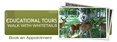 Educational Tours: WALK WITH WHITETAILS. Book a tour.
